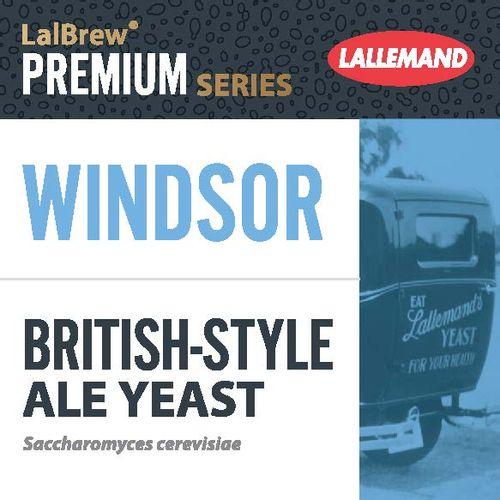 Fermento Windsor - Lallemand